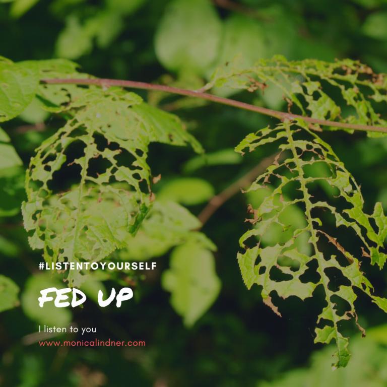 #listentoyourself_monicalindner_fed up