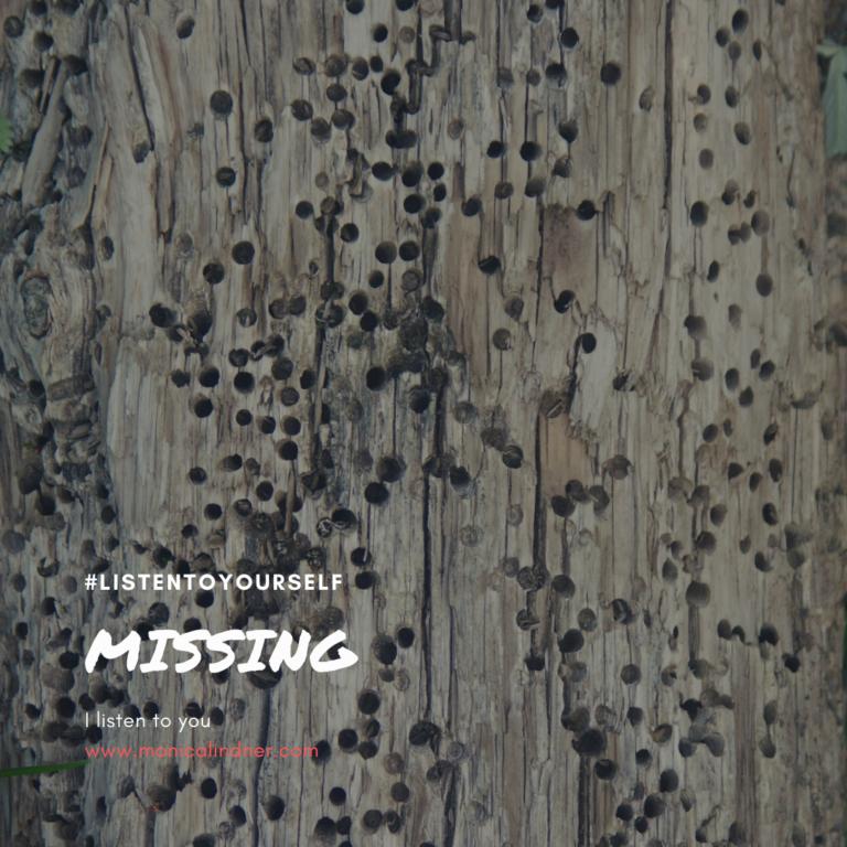 #listentoyourself_monicalindner_missing