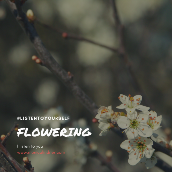 #listentoyourself_monicalindner_flowering