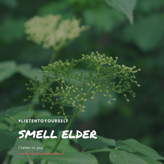 #listentoyourself_monicalindner_smell elder